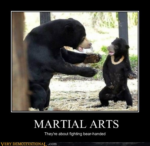 demotivational_posters_martial_arts.jpg